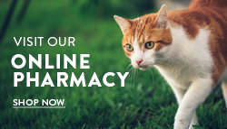 Shop our online pharmacy.
